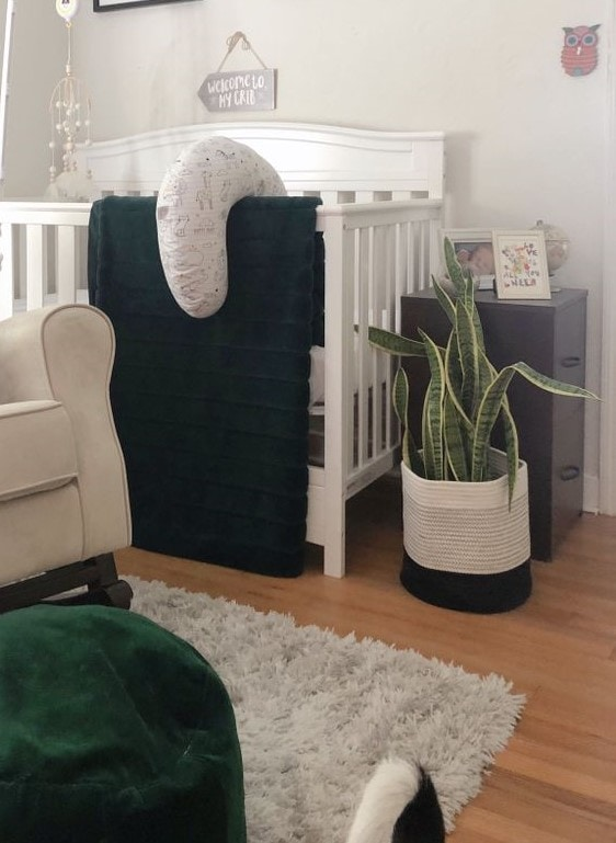 Nursery Crib and Air Purifying Plant | FurloughedFoodie.com