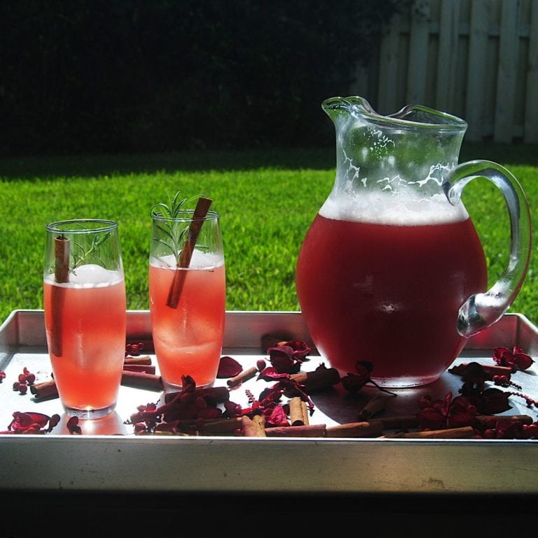 Sparkling Mulled Cranberry Cocktail - With Pitcher