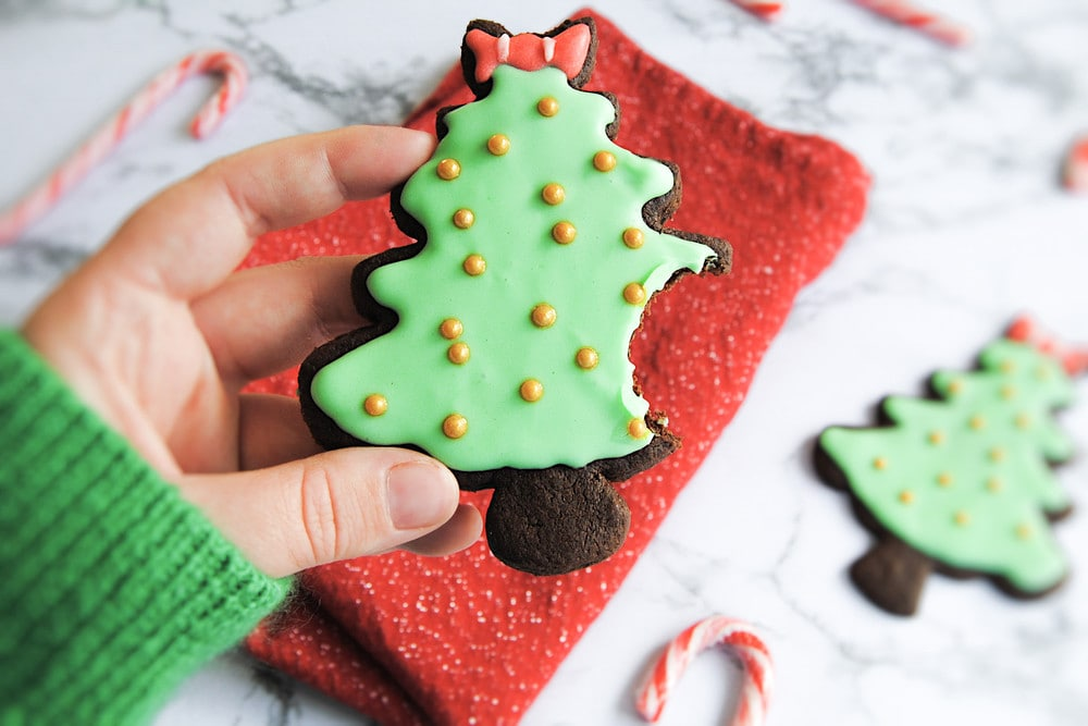 Chocolate Peppermint Christmas Cookies - With Bite