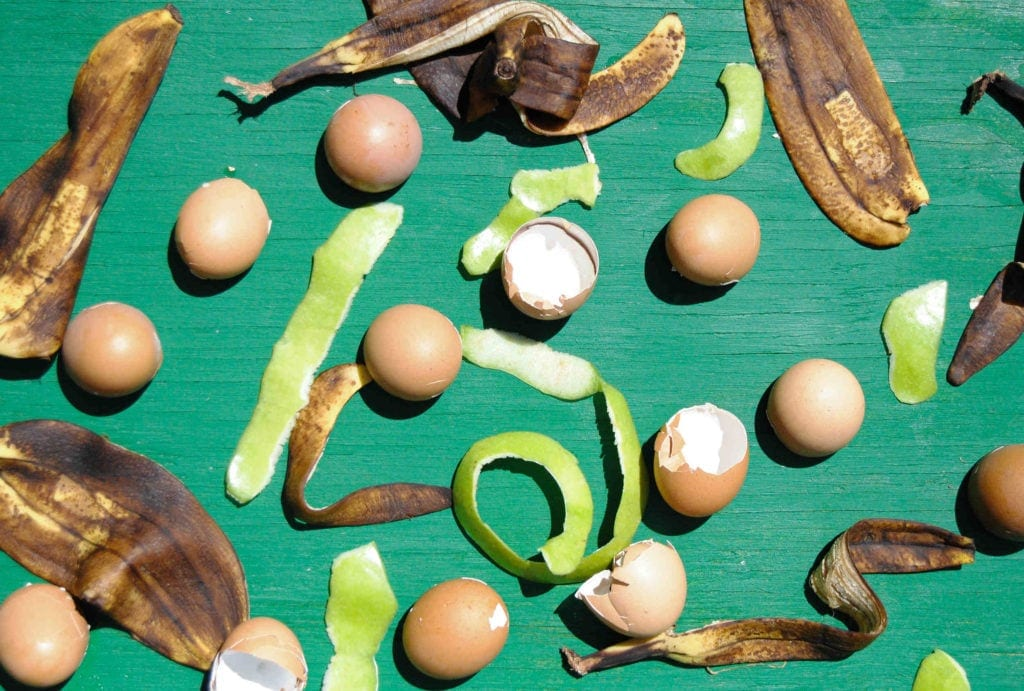 food waste represented by eggshells banana peels and apple peel