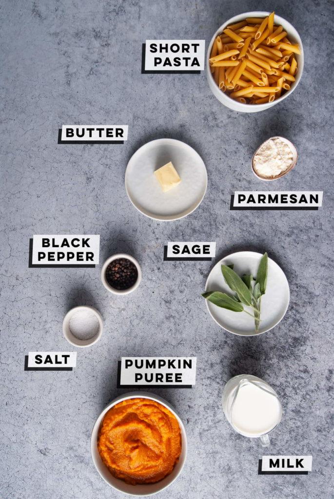 short pasta, butter, parmesan, pepper, sage, salt, pumpkin puree, milk