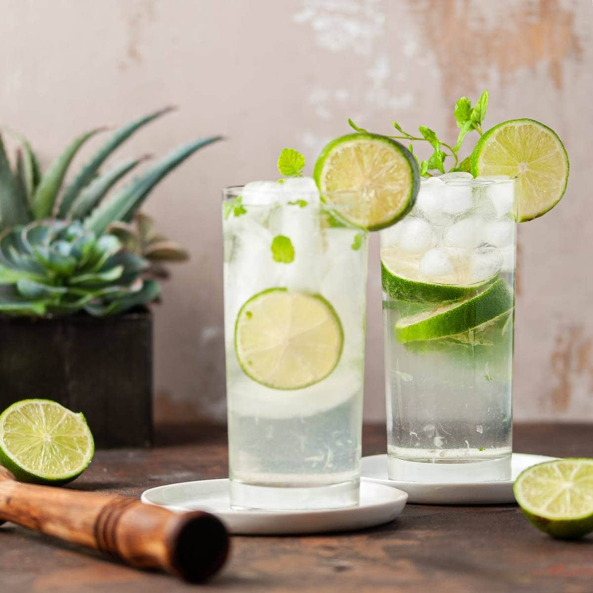 Two Gin Mojitos Next to a Succulent