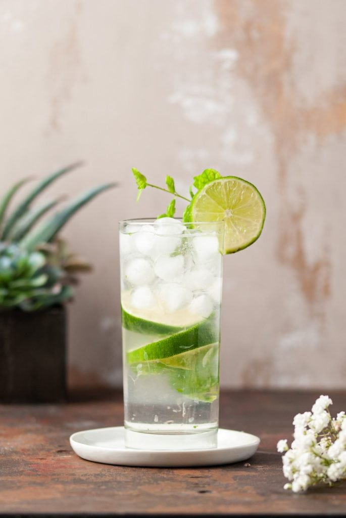 One Fizzy Mojito With Lime and Mint Garnish
