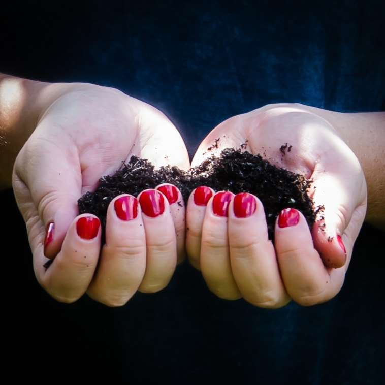 two hands holding compost soil